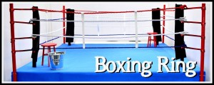 PAGE ICONS LONG - Dio Tut - Boxing Ring 01