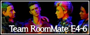 PAGE ICONS LONG - Team RoomMate E4-6 01